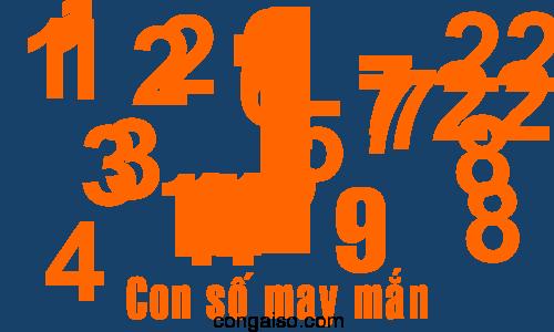con-so-may-man-12-cung-hoang-dao