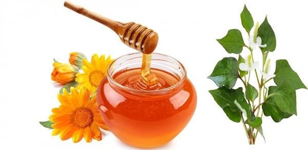 Làm chậm quá trình lão hóa nhờ rau diếp cá và mật ong