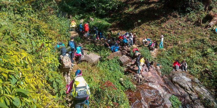 Những cung đường rừng hút hồn dân mê trekking (Ảnh sưu tầm)