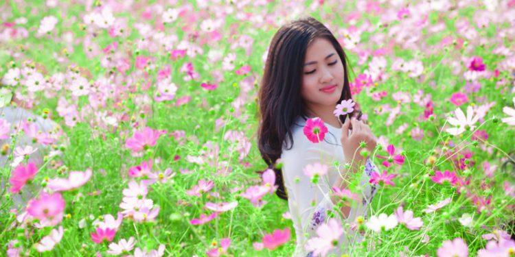"""Những bức ảnh đẹp """"nín thở"""" tại vườn hoa bãi đá sông Hồng (Ảnh sưu tầm)"""