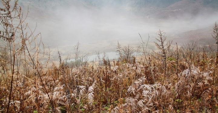 Khung cảnh bình yên trên thung lũng Tả Cô Y (Ảnh sưu tầm)