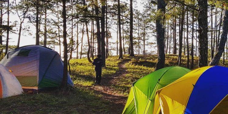 Hoạt động cắm trại, picnic ngày Hè Hà Nội ( Ảnh sưu tầm)