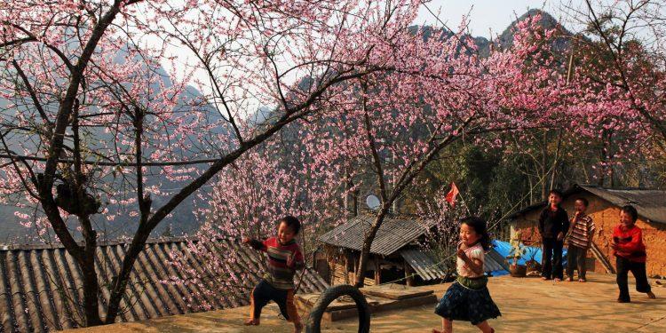 Trẻ em vui đùa dưới gốc Đào mùa Xuân (Ảnh sưu tầm)