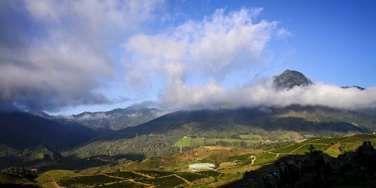 Núi Tả Liên 13