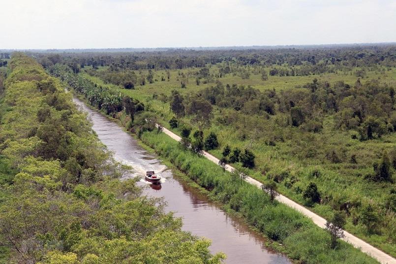 Kinh nghiệm du lịch trọn vẹn rừng U Minh Hạ ở Cà Mau 10