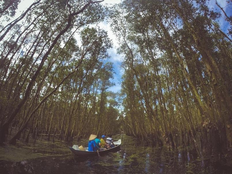 Kinh nghiệm du lịch trọn vẹn rừng U Minh Hạ ở Cà Mau 5