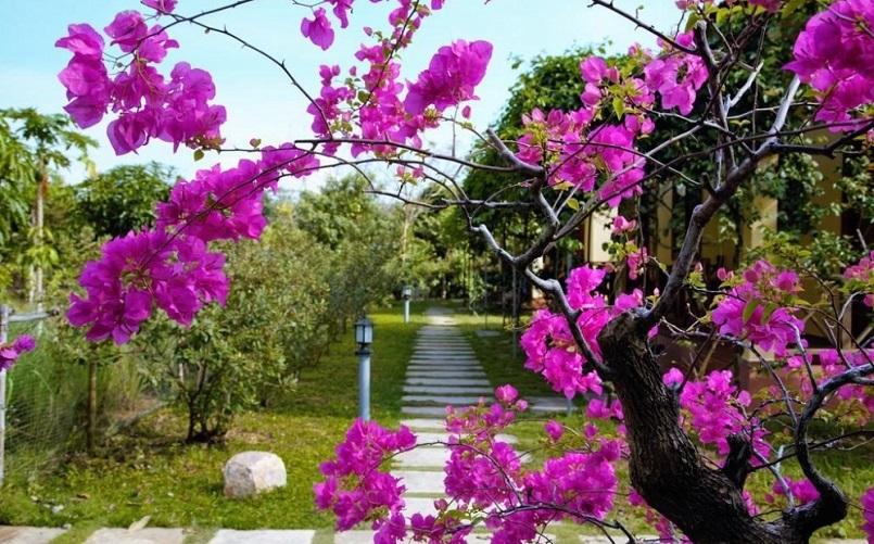 Danh sách các homestay ở Phú Quốc vừa đẹp, vừa rẻ 17