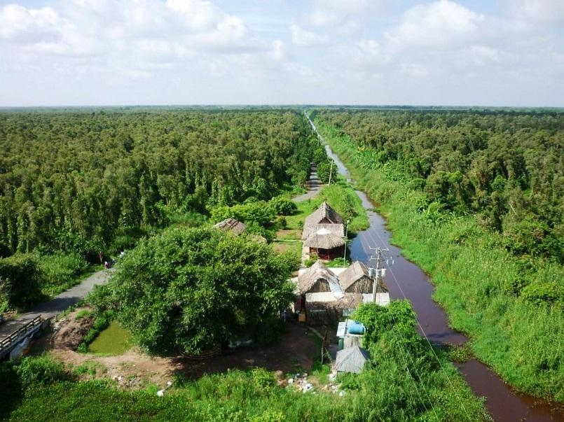 Kinh nghiệm du lịch trọn vẹn rừng U Minh Hạ ở Cà Mau 12
