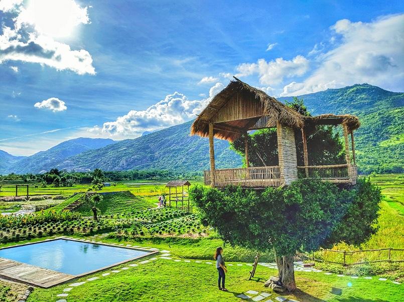 Kinh nghiệm du lịch phan Rang - Ninh Thuận chi tiết 15