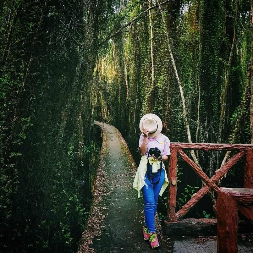 Du lịch sinh thái miền Tây 14