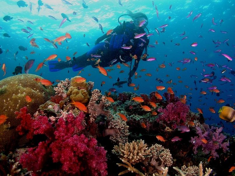 Danh sách các địa điểm du lịch Phú Quốc hot nhất hiện nay 11