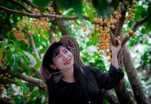 Danh sách các khu miệt vườn trái cây nổi tiếng ở miền Tây