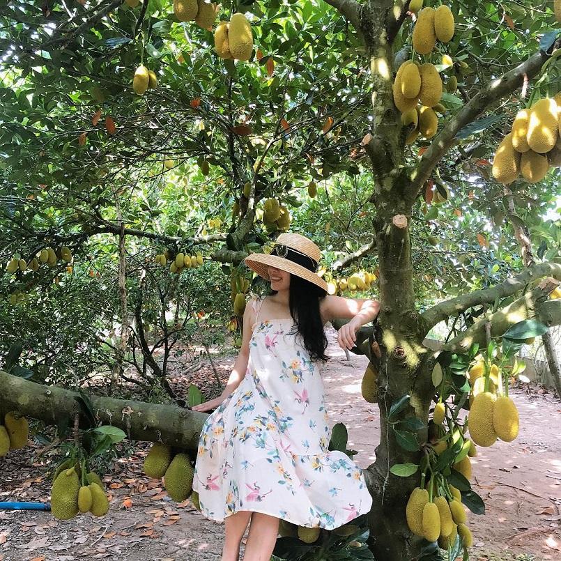 Danh sách các khu miệt vườn trái cây nổi tiếng ở miền Tây 15