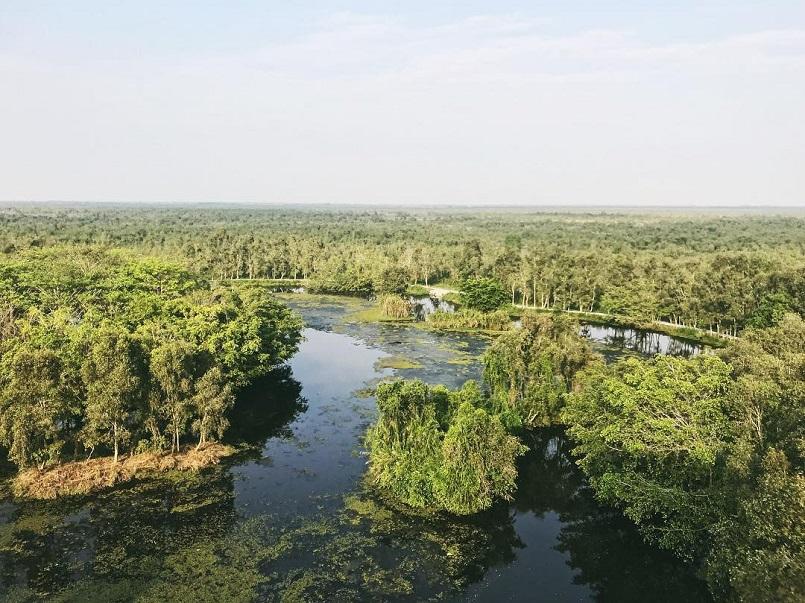 Kinh nghiệm du lịch trọn vẹn rừng U Minh Hạ ở Cà Mau 7