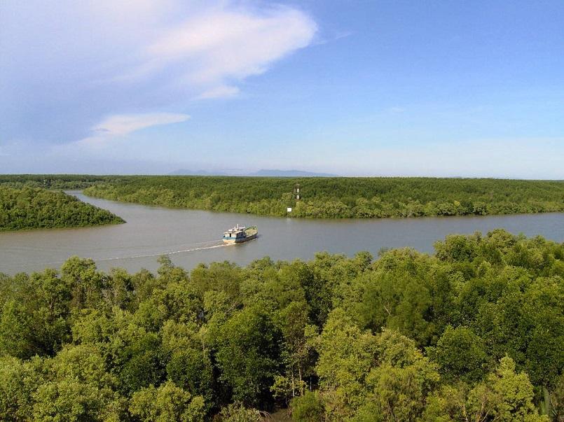 Kinh nghiệm du lịch trọn vẹn rừng U Minh Hạ ở Cà Mau 1