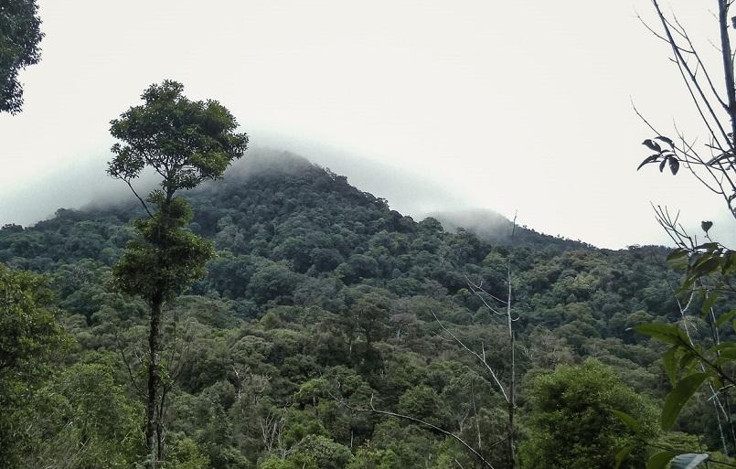 Trekking Langbiang - Thử sức chuyến leo núi săn mây cực đã cùng Celeb 12