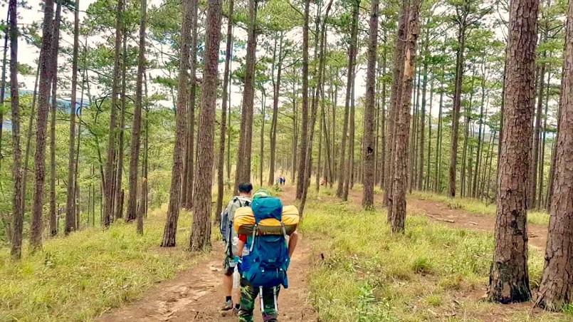 Trekking Langbiang - Thử sức chuyến leo núi săn mây cực đã cùng Celeb 11