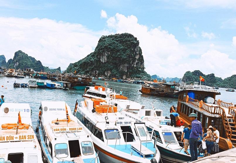 Tổng hợp kinh nghiệm du lịch đảo Cô Tô, cập nhật mới tinh 8