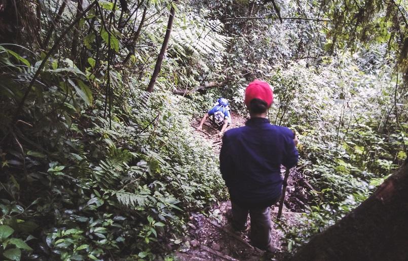 Trekking Langbiang - Thử sức chuyến leo núi săn mây cực đã cùng Celeb 19