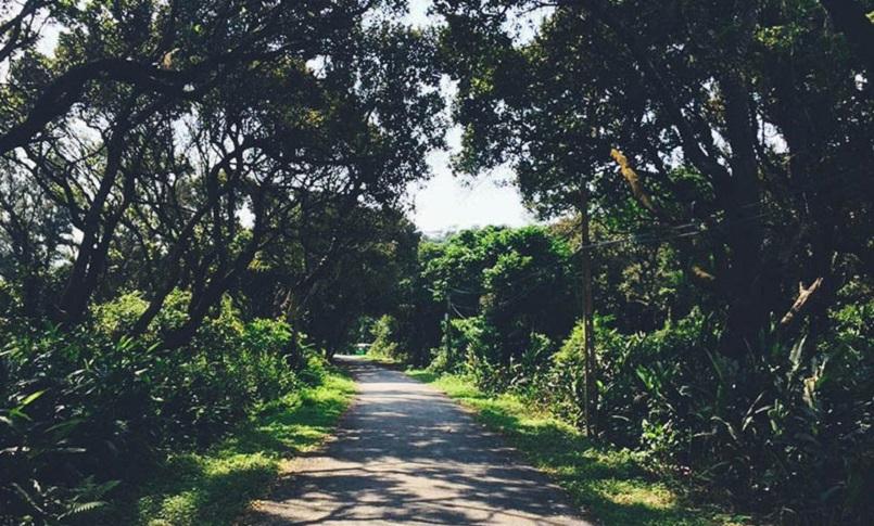 Tổng hợp kinh nghiệm du lịch đảo Cô Tô, cập nhật mới tinh 27