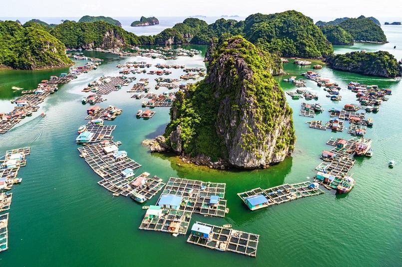 Tổng hợp kinh nghiệm du lịch đảo Cát Bà mới nhất 12