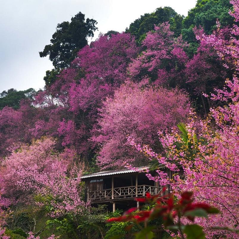32 địa điểm du lịch Thái Lan không thể không gọi tên khi đến 28