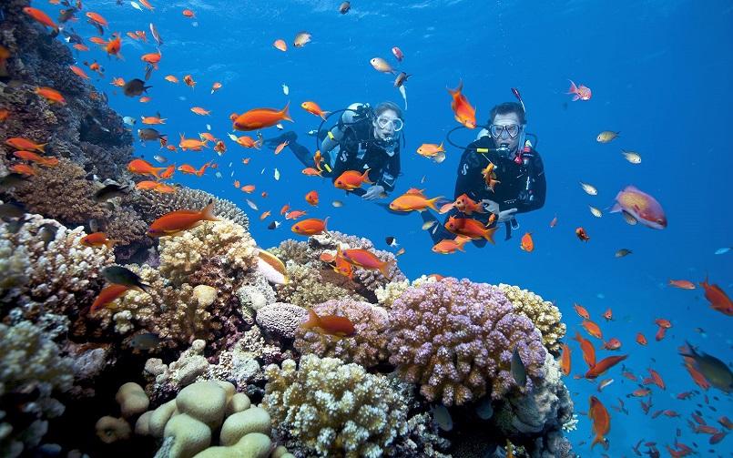 Du lịch đảo Thái Lan với Top các hòn đảo đẹp như thiên đường hot 13
