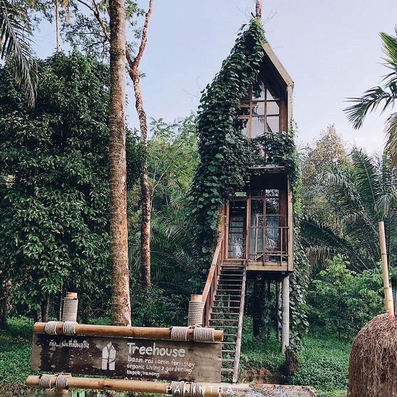 Khám phá ngay các Resort Thái Lan hút cả những sao hạng A thế giới 23
