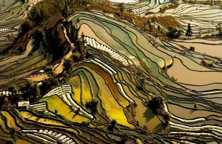 Ruộng bậc thang Nguyên Dương - địa điểm du lịch Trung Quốc