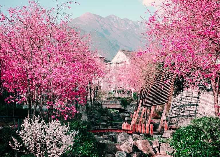 Du lịch Trung Quốc những ngày cuối Xuân