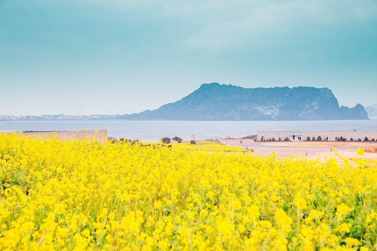 Địa điểm du lịch ở Jeju