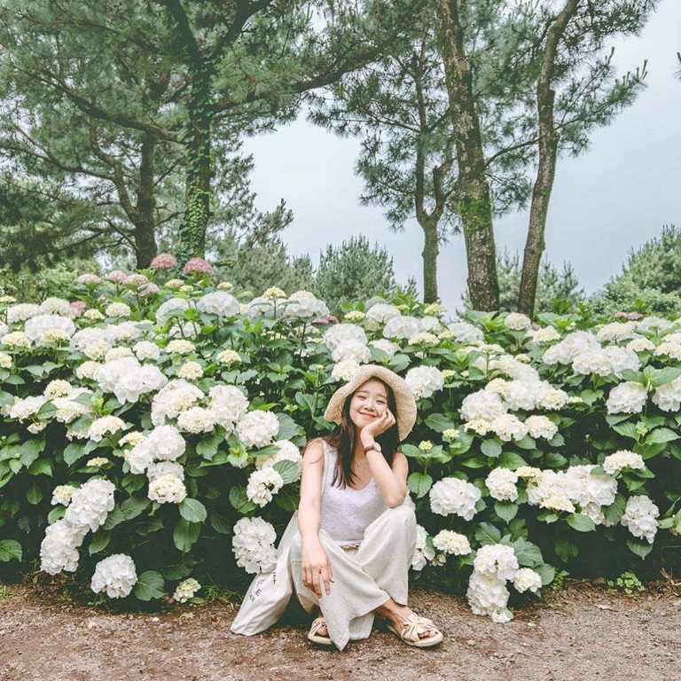 Công viên thiên nhiên Hueree - Địa điểm du lịch ở Jeju