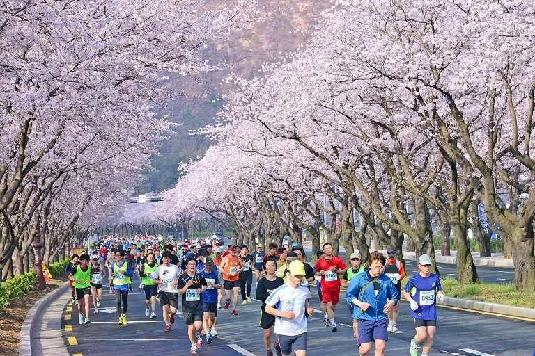 Thành phố Gyeongju những ngày Xuân