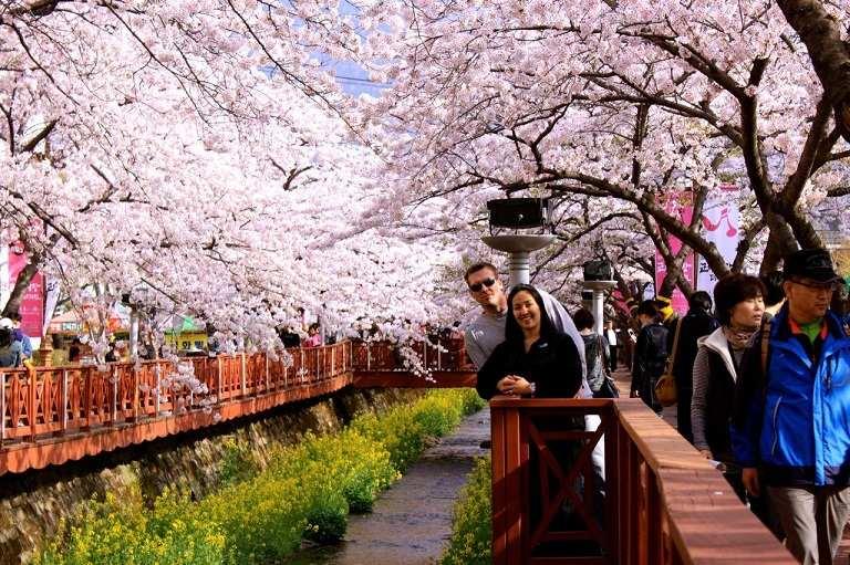 Dù là mùa Xuân nhưng ở Hàn Quốc vẫn khá lạnh