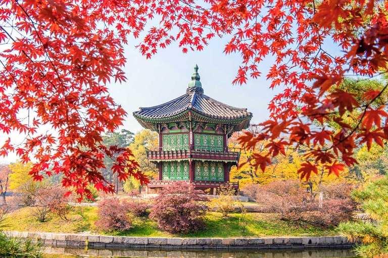 Hàn Quốc - Một trong những nơi ngắm mùa Thu đẹp nhất Châu Á
