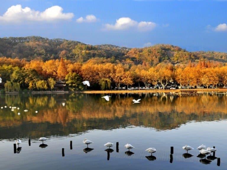 Công viên quốc gia đầm - Địa điểm du lịch Hàng Châu lầy Xixi