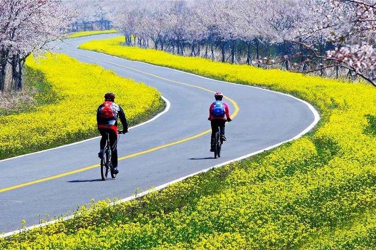 Noksan - Địa điểm du lịch được check in nhiều vào mùa Xuân