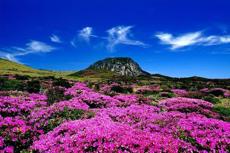 Hallasan - Địa điểm du lịch đảo Jeju nổi tiếng