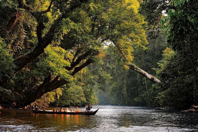 Taman Negara - địa điểm du lịch tại Malaysia