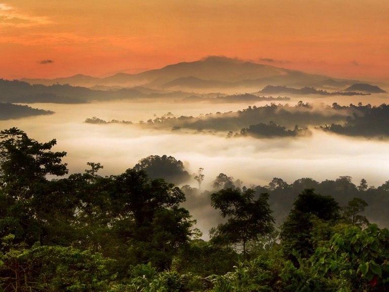 Thung lũng Danum - địa điểm du lịch tại Malaysia