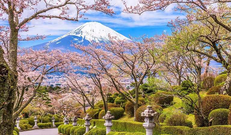Địa điểm ngắm hoa Anh Đào ở Nhật Bản