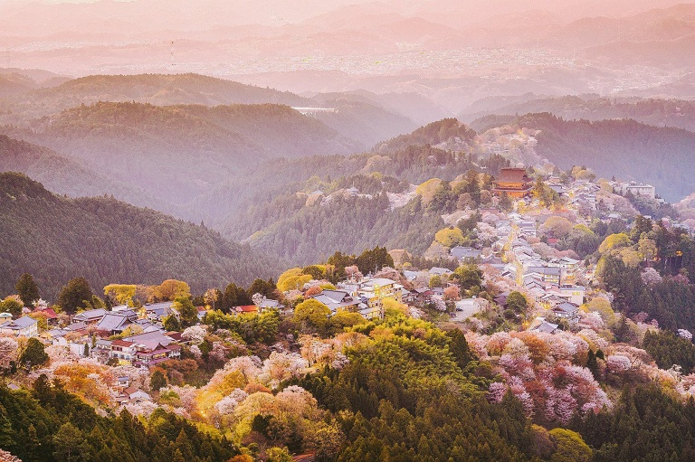 Núi Yoshino - Địa điểm ngắm hoa Anh Đào ở Nhật Bản