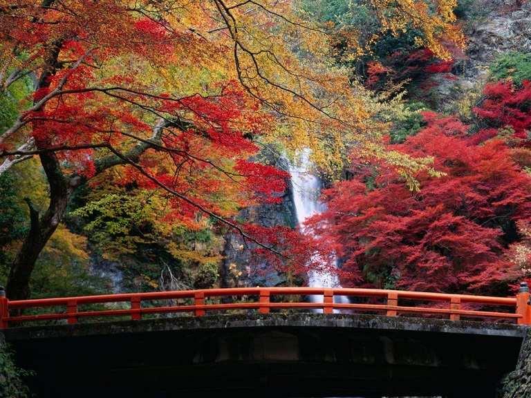 Công viên Minoo - Địa điểm du lịch Osaka