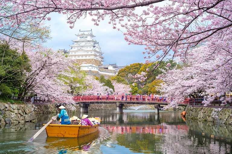 Osaka sở hữu nhiều địa điểm ngắm hoa Anh Đào đẹp nhất Nhật Bản
