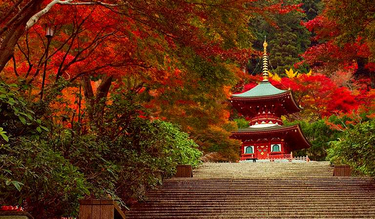 Mùa Thu ở Osaka