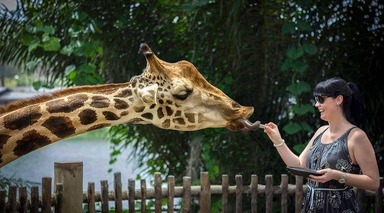 Sở thú Quốc gia