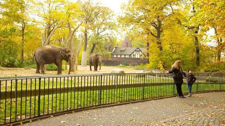 Kinh nghiệm du lịch Berlin - Vườn thú Berlin