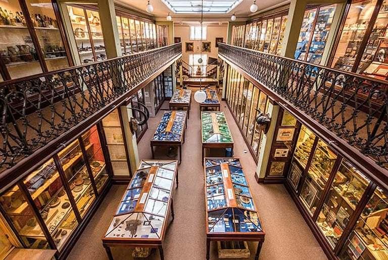 Kinh nghiệm du lịch Cambridge - Bảo tàng Khảo cổ học và Nhân chủng học