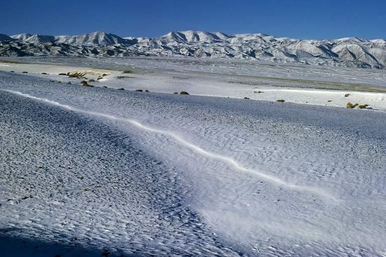 Sa mạc Cold độc nhất vô nhị