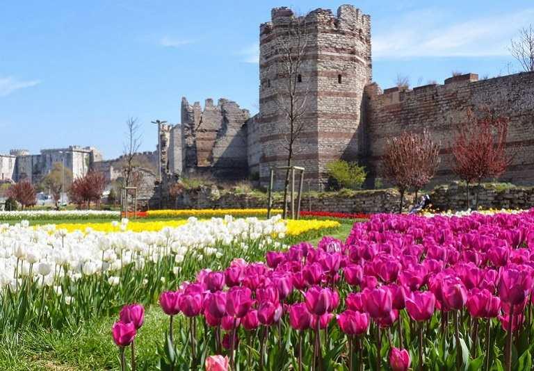 Trăm hoa đua nở mùa Xuân Thổ Nhĩ Kỳ